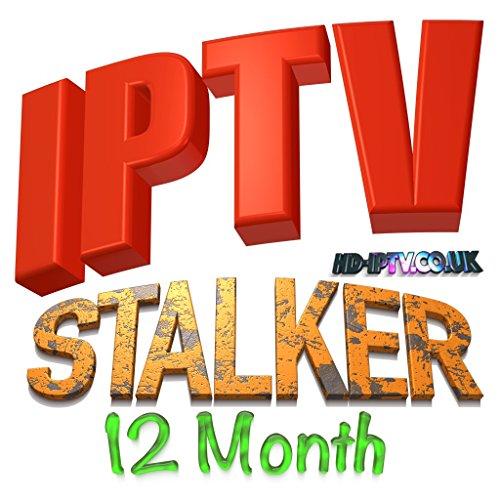 1 YEAR ACTIVATION IPTV SUBSCRITION AVOV MAG BOX 250 254 IPTV STALKER
